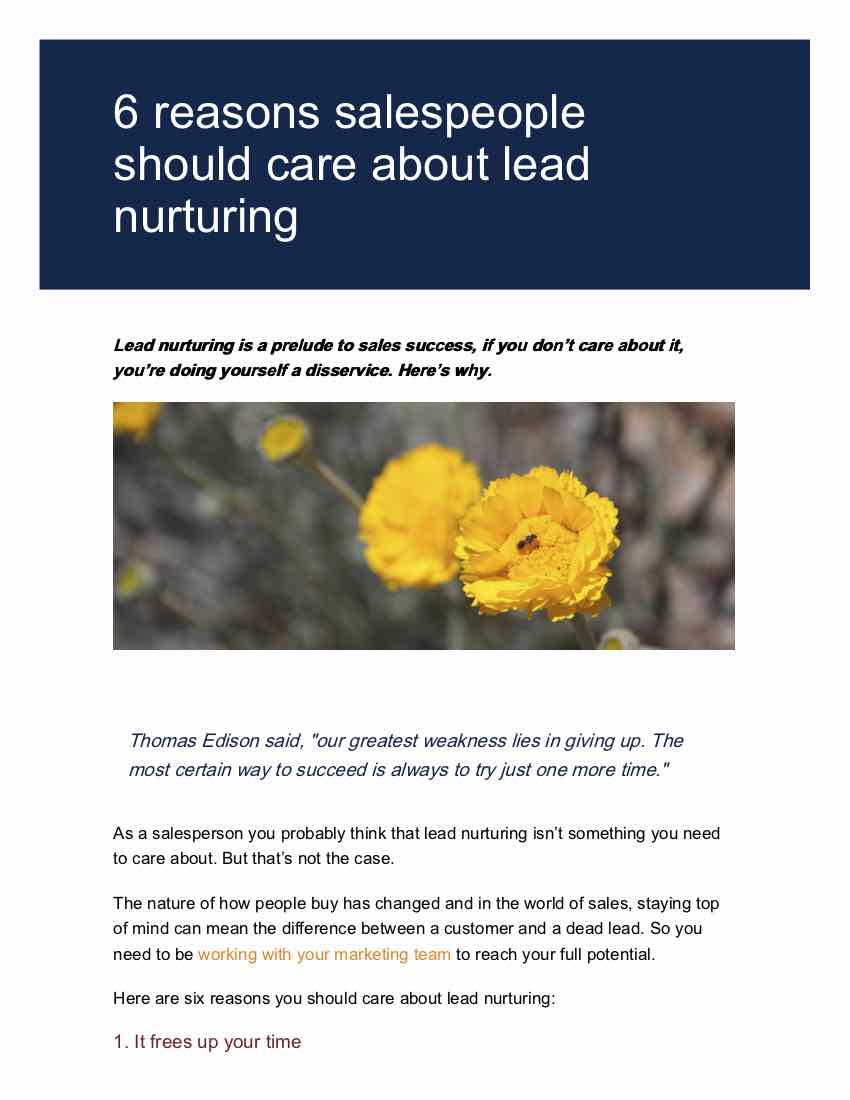 You guide to lead nurturing and sales page 3.jpg